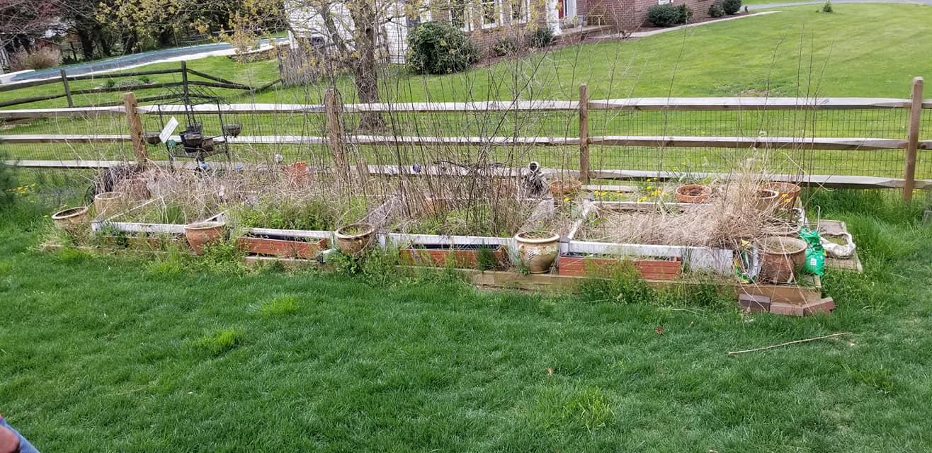 Garden to Patio Before